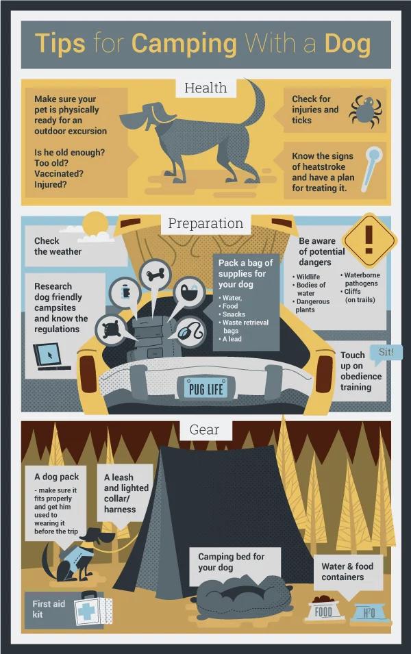CampingWithDog