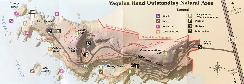 Yaquina Head.jpg